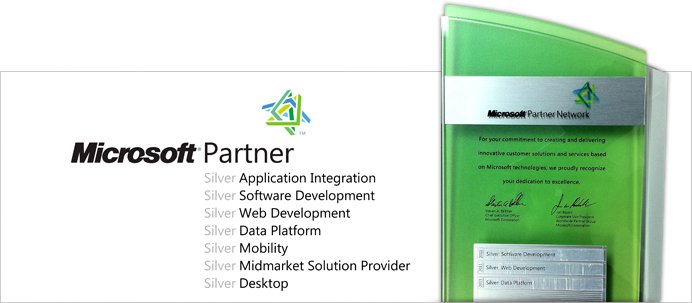 Microsoft Partner Silver Web Development, Silver Data Platform, Silver Software Development